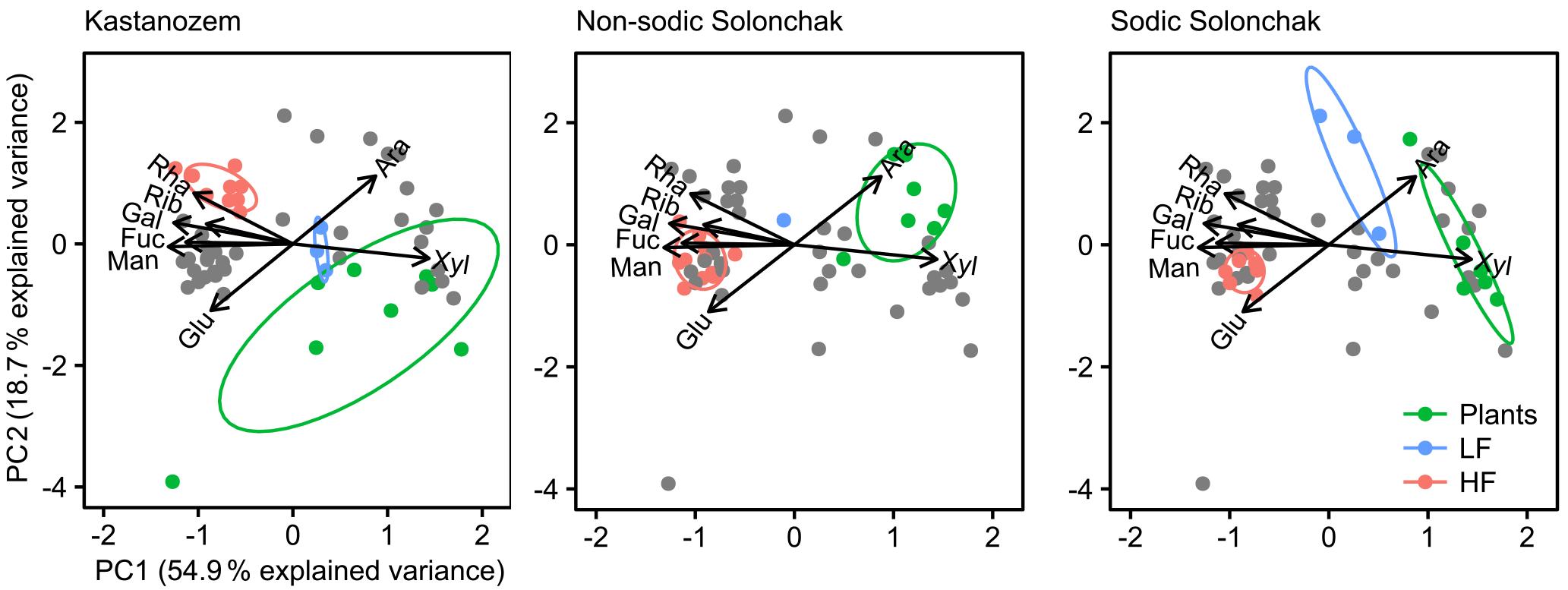 BG - Organic matter dynamics along a salinity gradient in