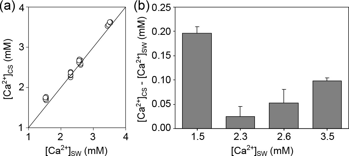 BG - Calcification in a marginal sea – influence of seawater