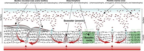 BG - Relations - Seasonal lake surface water temperature