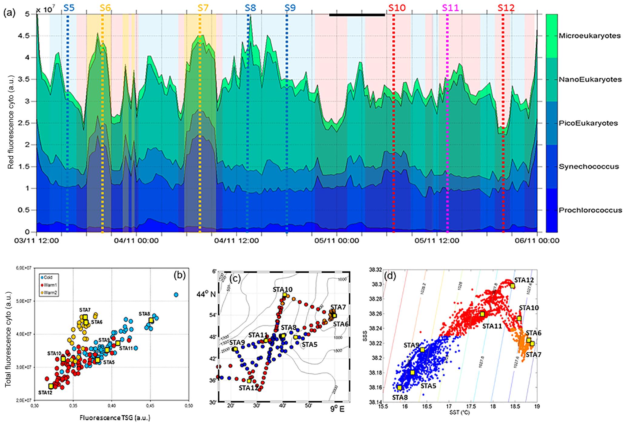 BG - Coupling physics and biogeochemistry thanks to high-resolution