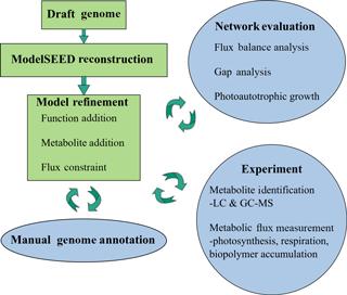 https://www.biogeosciences.net/15/2219/2018/bg-15-2219-2018-f01