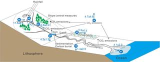 https://www.biogeosciences.net/15/3049/2018/bg-15-3049-2018-f03