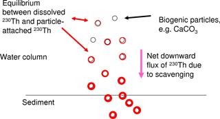 https://www.biogeosciences.net/15/3521/2018/bg-15-3521-2018-f01