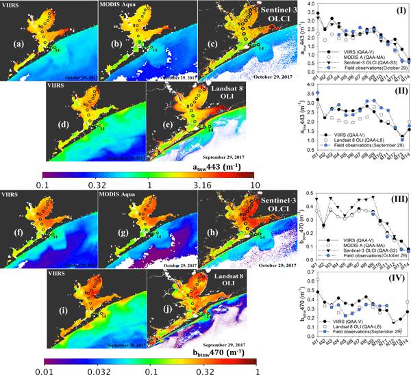 BG - Relations - Global variability of phytoplankton