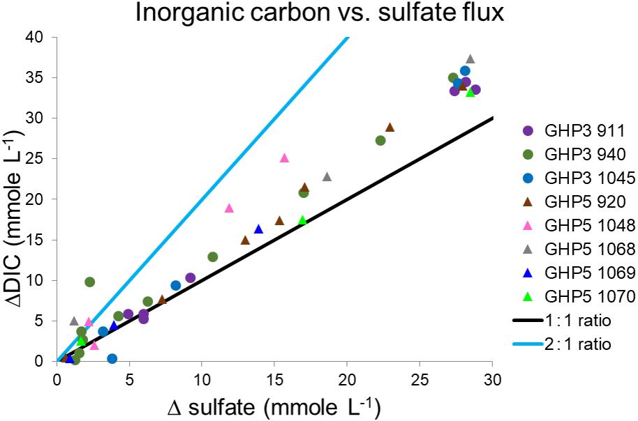 BG - Geophysical and geochemical controls on the megafaunal