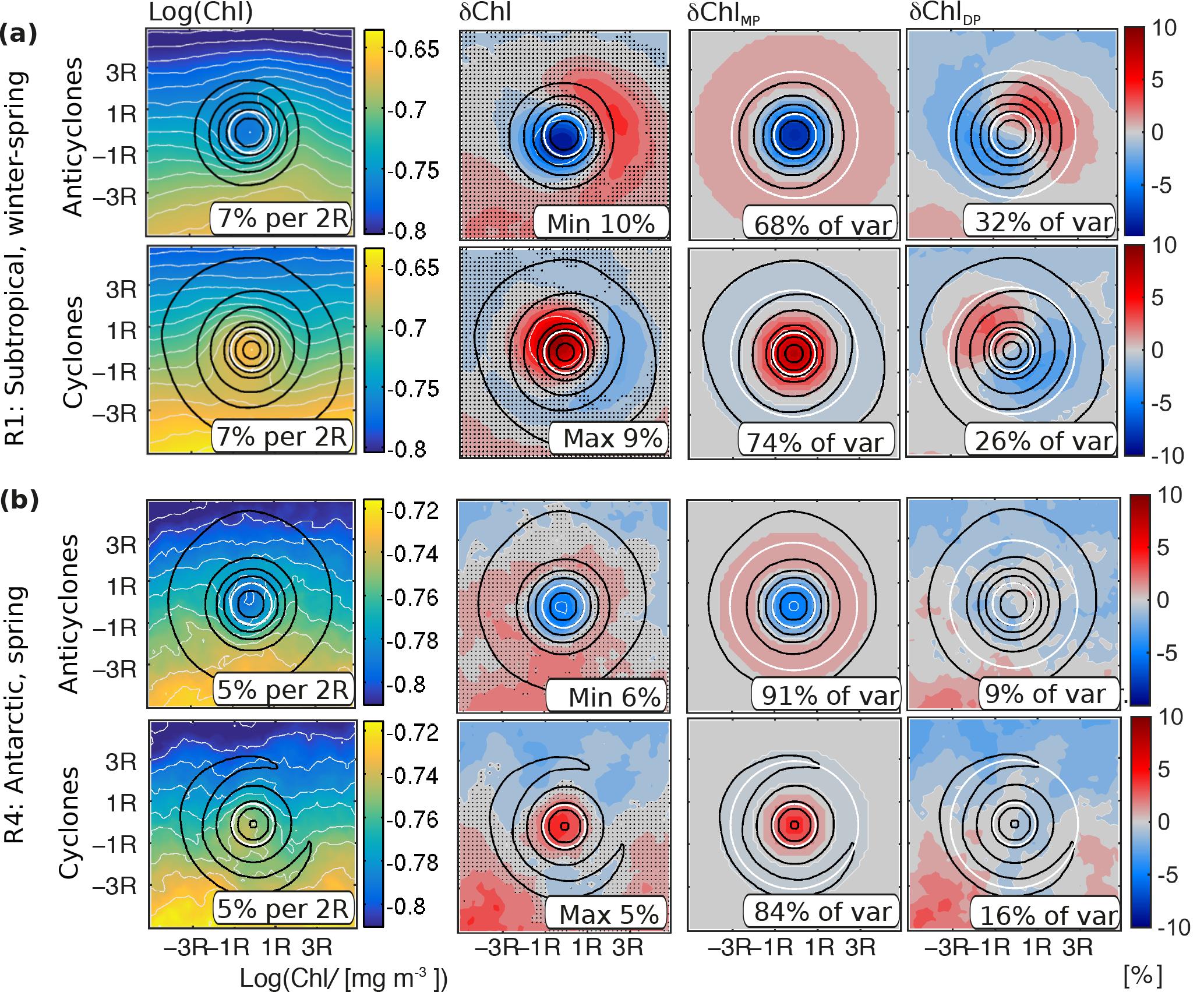 BG - Imprint of Southern Ocean mesoscale eddies on chlorophyll