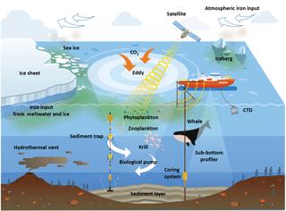 https://www.biogeosciences.net/15/5847/2018/bg-15-5847-2018-f11