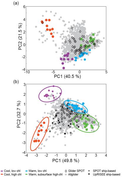 BG - Relations - Post-depositional formation of vivianite