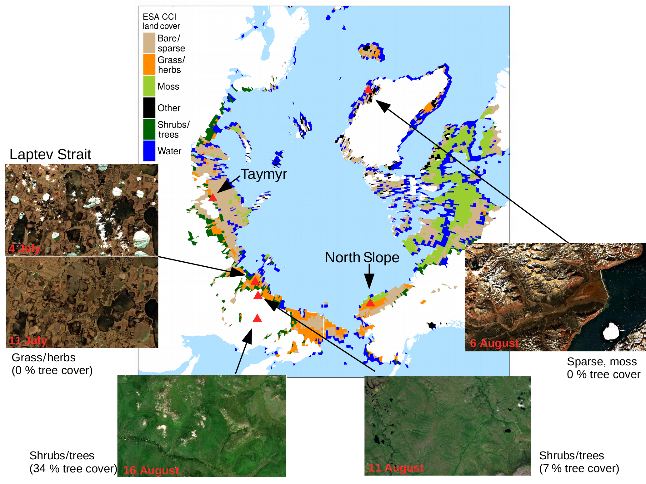 BG - Assessing the dynamics of vegetation productivity in ...