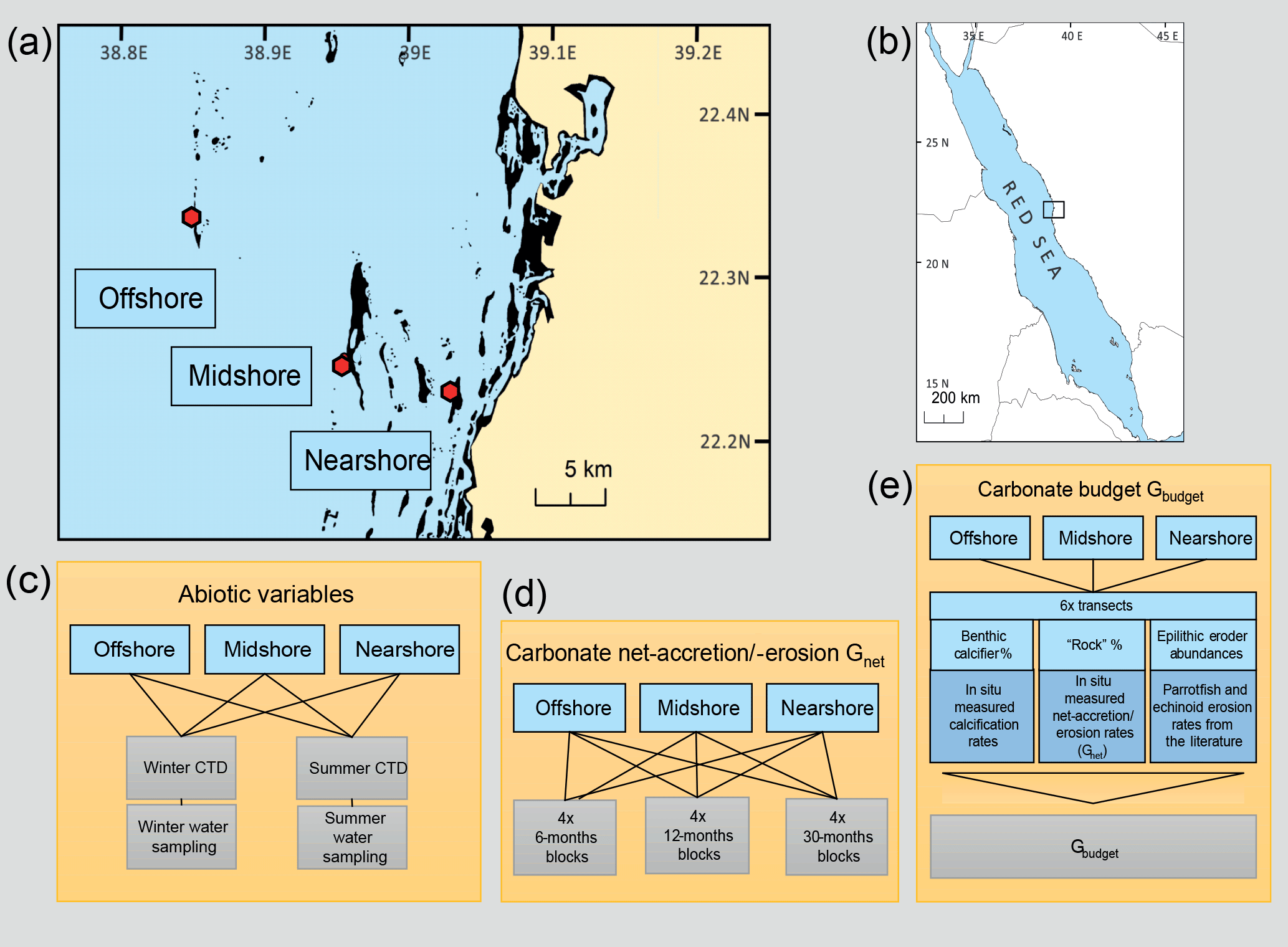 BG - Coral reef carbonate budgets and ecological drivers in
