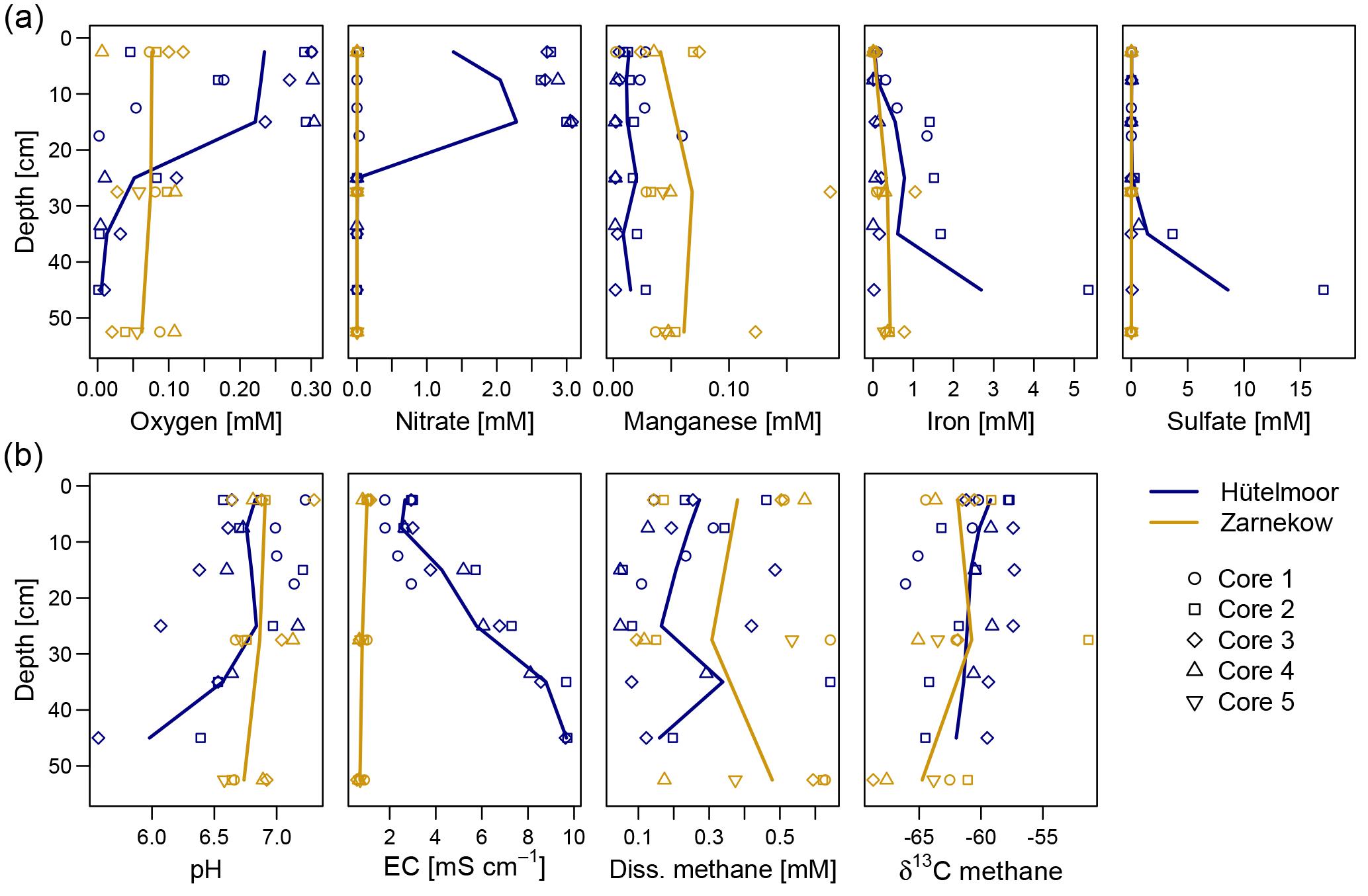 BG - Predominance of methanogens over methanotrophs in rewetted fens ...
