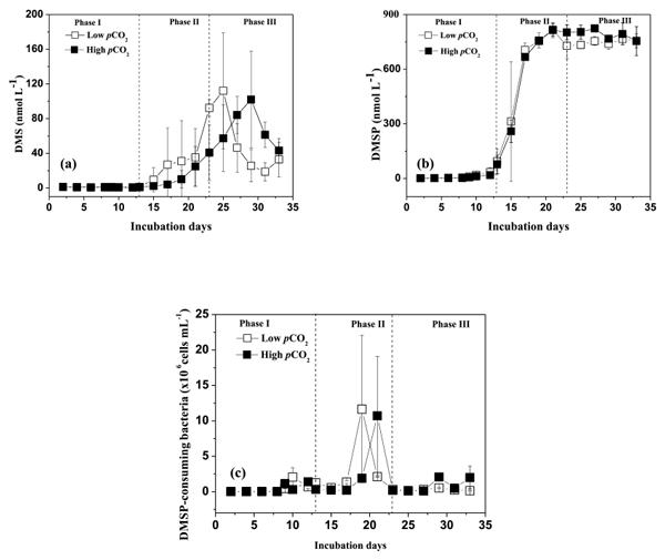 BG - Relations - Carbon storage versus albedo change