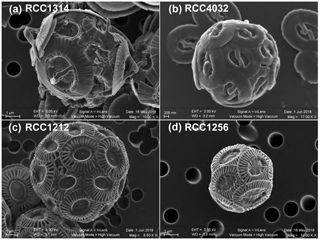 https://www.biogeosciences.net/15/6761/2018/bg-15-6761-2018-f01