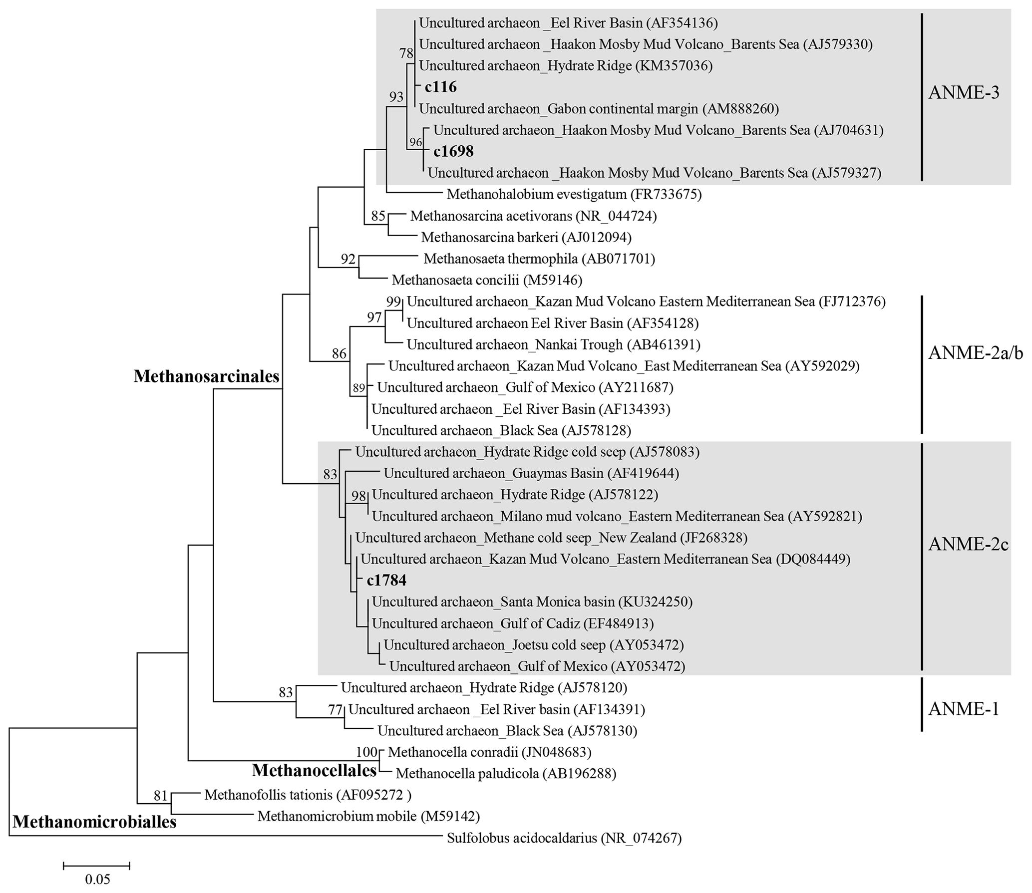 BG - Biogeochemical evidence of anaerobic methane oxidation