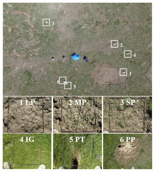 https://www.biogeosciences.net/16/1097/2019/bg-16-1097-2019-f01