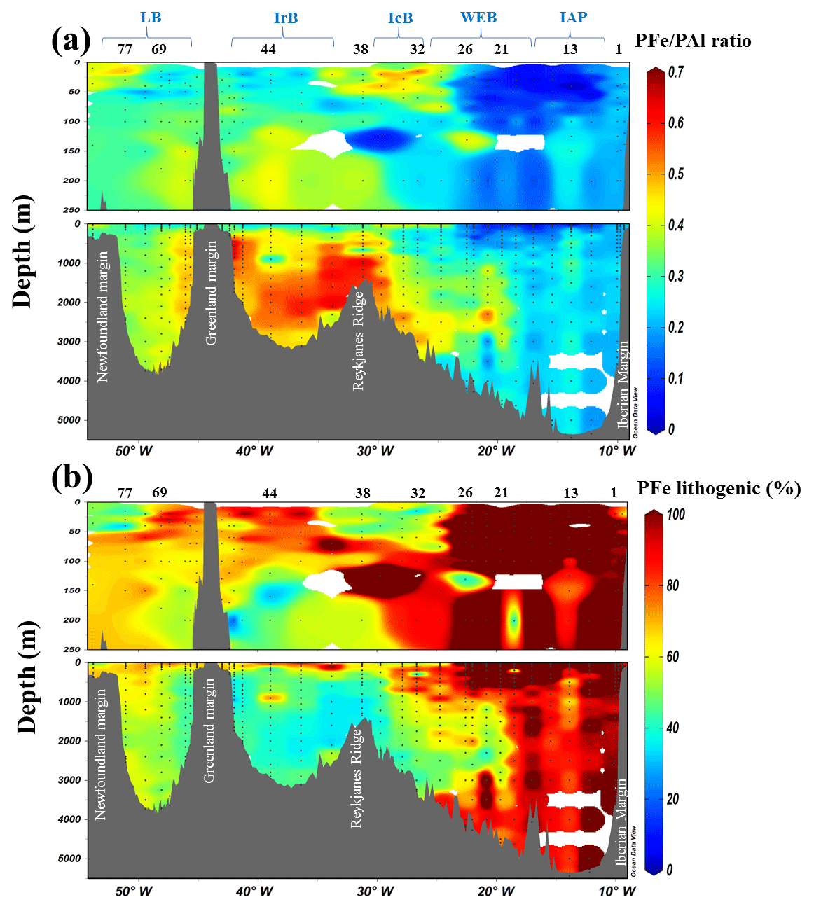 a9bf98cfa1 BG - Inputs and processes affecting the distribution of particulate ...
