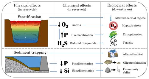 https://www.biogeosciences.net/16/1657/2019/bg-16-1657-2019-f02