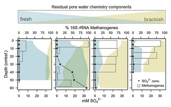 ce9ca69d5fb BG - Relations - Assessing the spatial variability in peak season ...