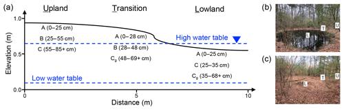 https://www.biogeosciences.net/16/2573/2019/bg-16-2573-2019-f01