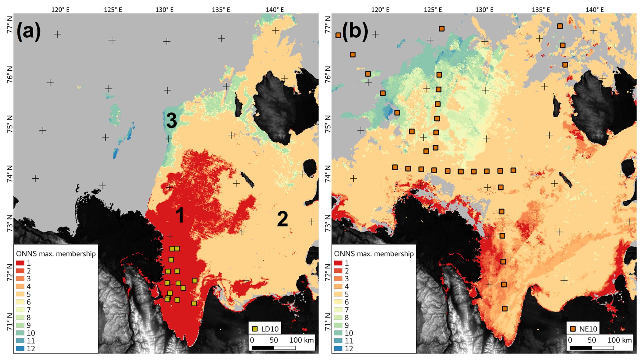 BG - Dissolved organic matter at the fluvial–marine