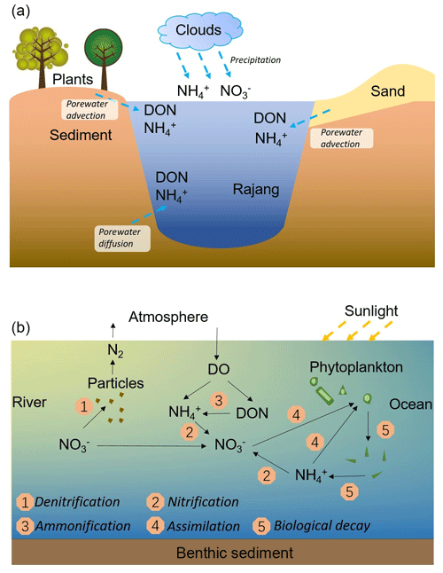 https://www.biogeosciences.net/16/2821/2019/bg-16-2821-2019-f08
