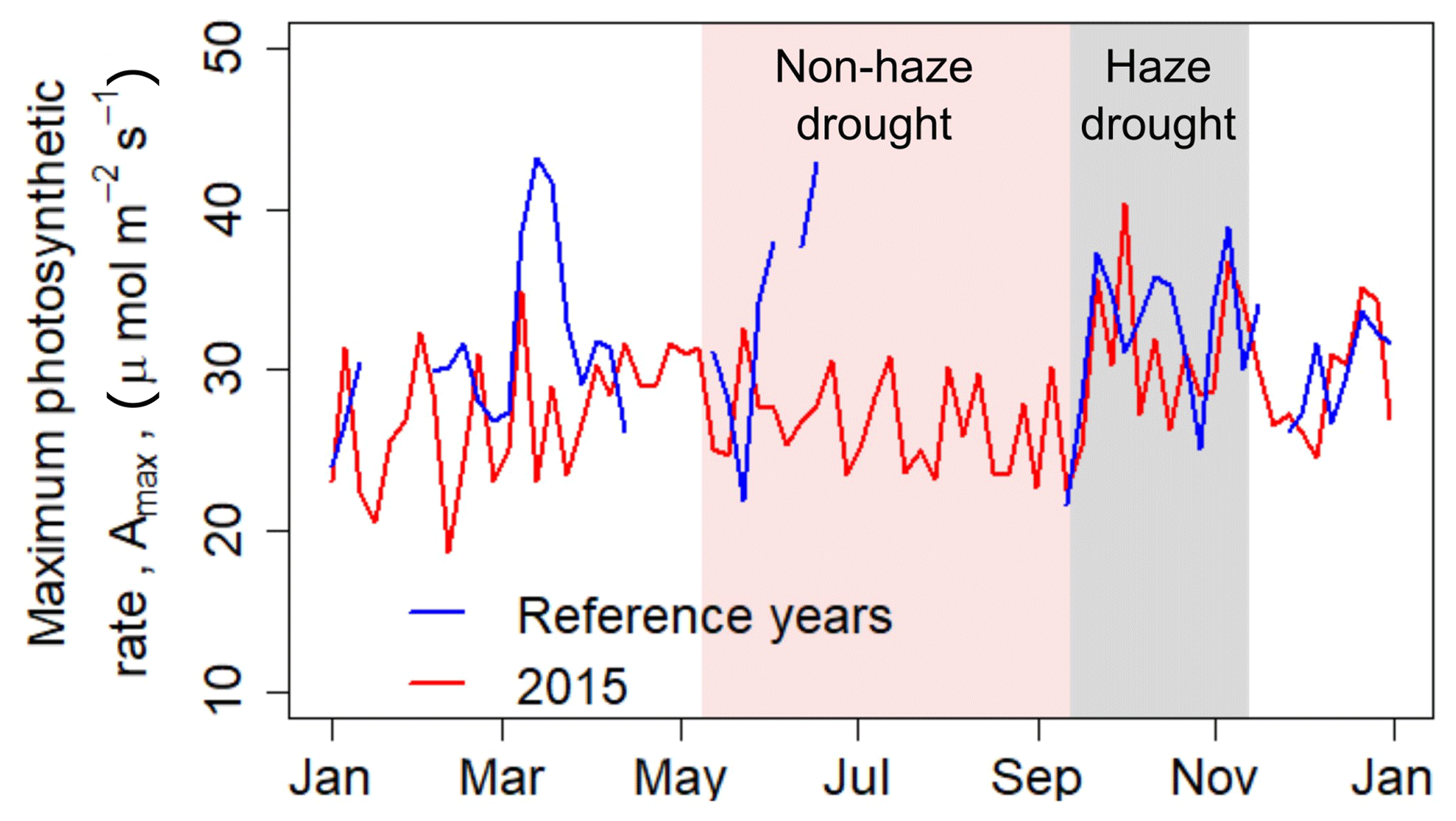 BG - El Niño–Southern Oscillation (ENSO) event reduces CO2 uptake of