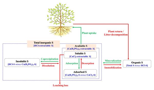 BG - Relations - The influence of soil properties and