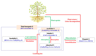 https://www.biogeosciences.net/16/2891/2019/bg-16-2891-2019-f01