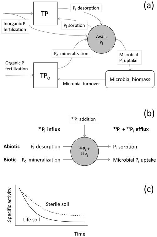 https://www.biogeosciences.net/16/3047/2019/bg-16-3047-2019-f01