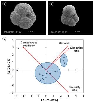 https://www.biogeosciences.net/16/3267/2019/bg-16-3267-2019-f05
