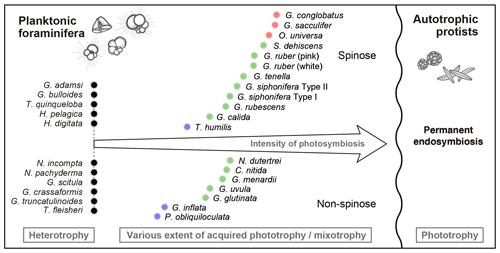 https://www.biogeosciences.net/16/3377/2019/bg-16-3377-2019-f11
