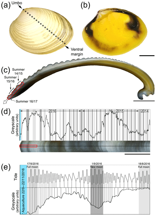 https://www.biogeosciences.net/16/3439/2019/bg-16-3439-2019-f01