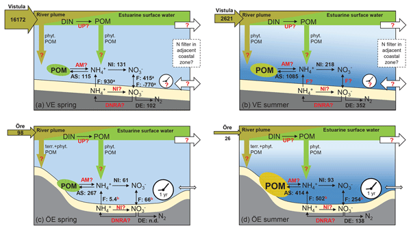BG - Particulate organic matter controls benthic microbial N retention and N  removal in contrasting estuaries of the Baltic Sea