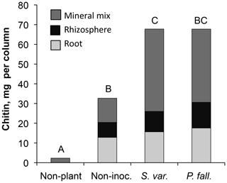 https://www.biogeosciences.net/16/3637/2019/bg-16-3637-2019-f01