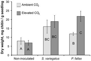 https://www.biogeosciences.net/16/3637/2019/bg-16-3637-2019-f02