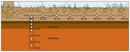 https://www.biogeosciences.net/16/3929/2019/bg-16-3929-2019-f01