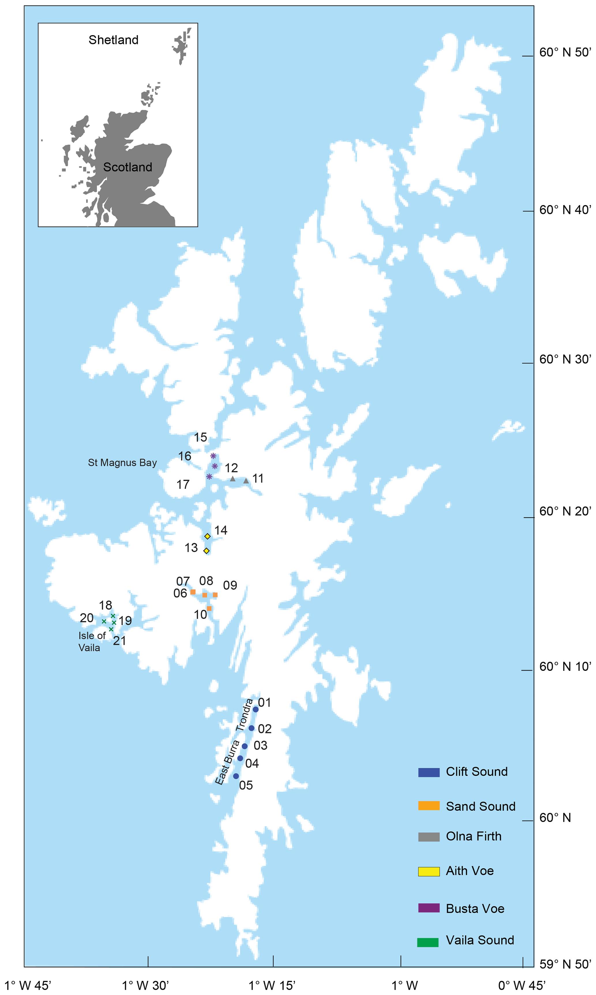 carbon Organic rich BG sedimentsbenthic foraminifera as l3KTcuFJ51