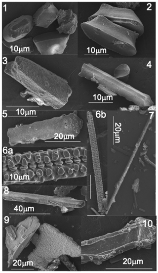 https://www.biogeosciences.net/16/4613/2019/bg-16-4613-2019-f01