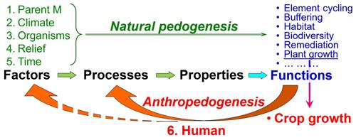 https://www.biogeosciences.net/16/4783/2019/bg-16-4783-2019-f02