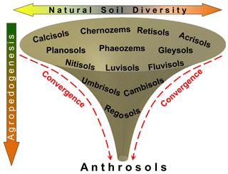 https://www.biogeosciences.net/16/4783/2019/bg-16-4783-2019-f09