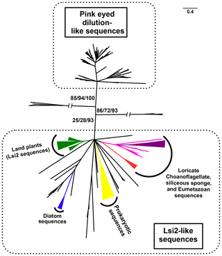 https://www.biogeosciences.net/16/4805/2019/bg-16-4805-2019-f02