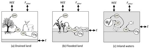 https://www.biogeosciences.net/16/769/2019/bg-16-769-2019-f02