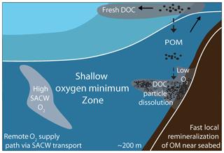 https://www.biogeosciences.net/16/979/2019/bg-16-979-2019-f10