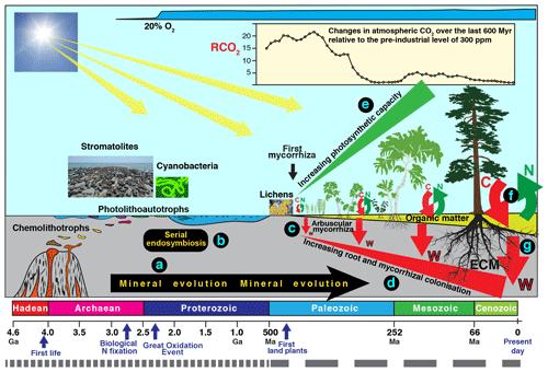 https://www.biogeosciences.net/17/1507/2020/bg-17-1507-2020-f03