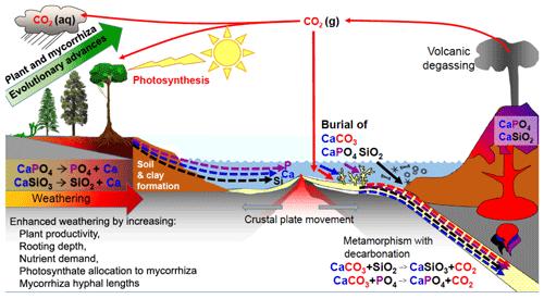 https://www.biogeosciences.net/17/1507/2020/bg-17-1507-2020-f04