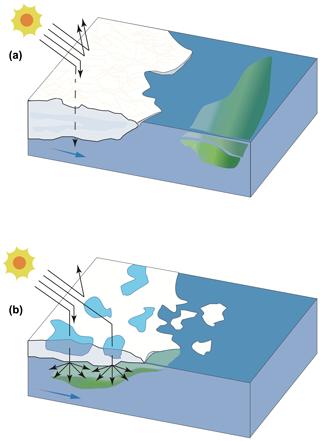 https://www.biogeosciences.net/17/1557/2020/bg-17-1557-2020-f10