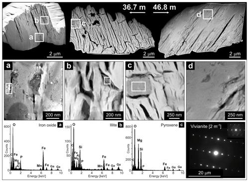https://www.biogeosciences.net/17/1955/2020/bg-17-1955-2020-f05