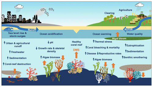 https://www.biogeosciences.net/17/2181/2020/bg-17-2181-2020-f05