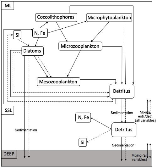https://www.biogeosciences.net/17/2289/2020/bg-17-2289-2020-f04