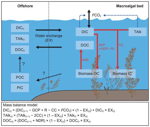 https://www.biogeosciences.net/17/2425/2020/bg-17-2425-2020-f02